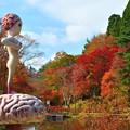 写真: 六甲植物園-1