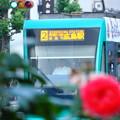写真: 2-広島電鉄5000形電車