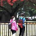 写真: b)~Traveler~Lovely couple(素敵なカップル)
