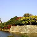 写真: ~広島城~