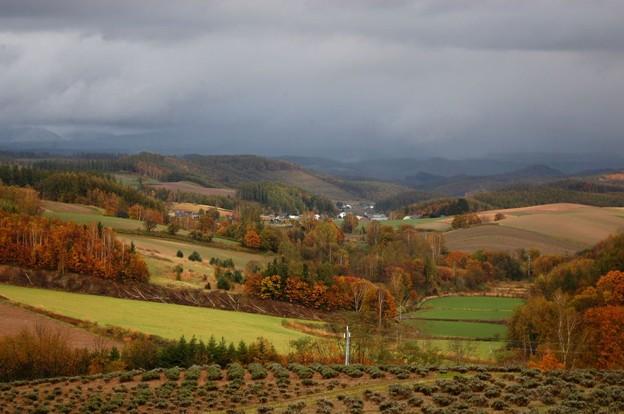晩秋の丘1