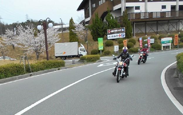写真: DSCN3547-1-R