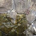 RIMG2277フケ西水漏れ
