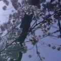 写真: 光のベール 卯辰山
