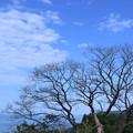 日本海(富山湾)と青空
