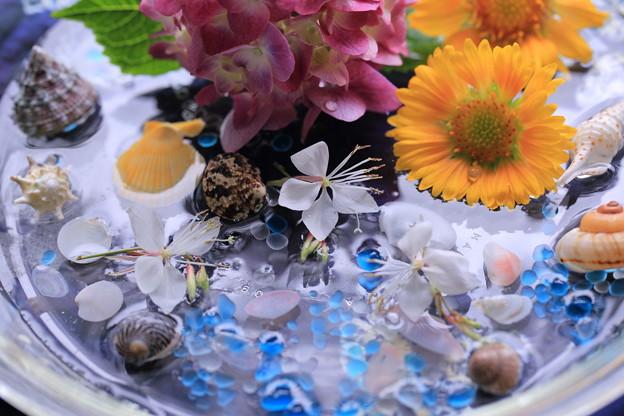 水盤(2)