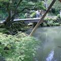 写真: 兼六園 瓢池