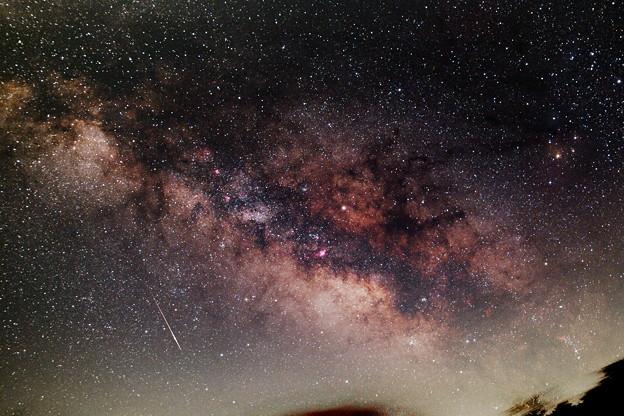 写真: こと座流星群と天の川