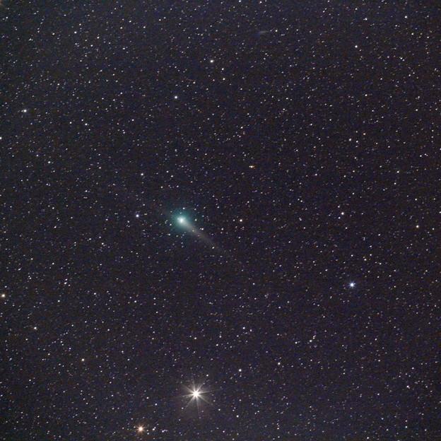写真: ジョンソン彗星(C/2015 V2)