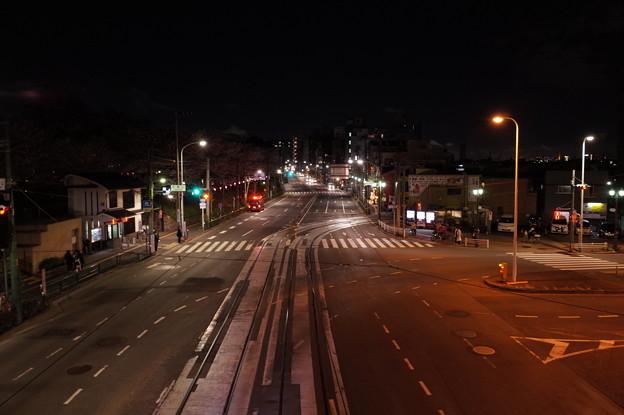 Photos: 飛鳥山の夜景