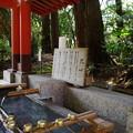 鹿島神宮 手水舎