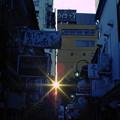 Photos: 夜へ