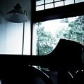 Photos: 童景
