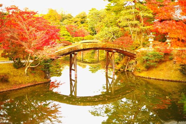 Photos: 虹いくたび
