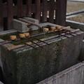 今宮神社 手水舎
