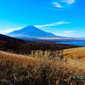 Photos: 秋富士