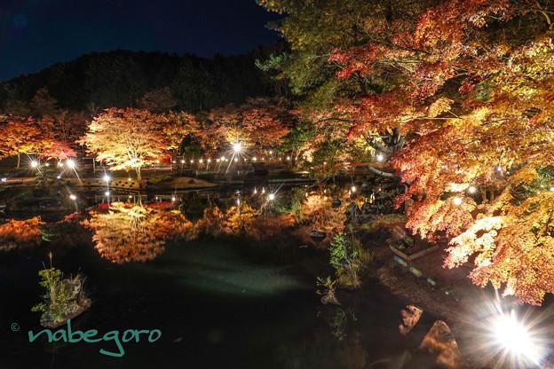 日本の秋-2