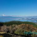 写真: 達磨山からの富士山