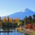 写真: 秋景色と富士
