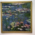 6月23日 国立西洋美術館