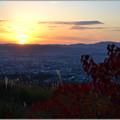 写真: 夕陽に