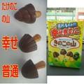 Photos: 【先週の甘味】東京都江東区新砂の、明治 チョコスナック きのこの山 大粒 現れるのか?! 幸せきのこ ほっとひといき。 幸せきのこ以外にたけのこの山?まで現れたw