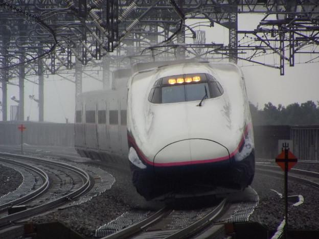E2系J13編成 (2)