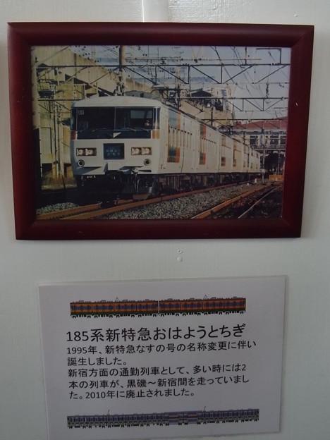 185系新特急おはようとちぎ (5)