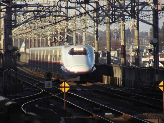 E2系J56編成 (7)