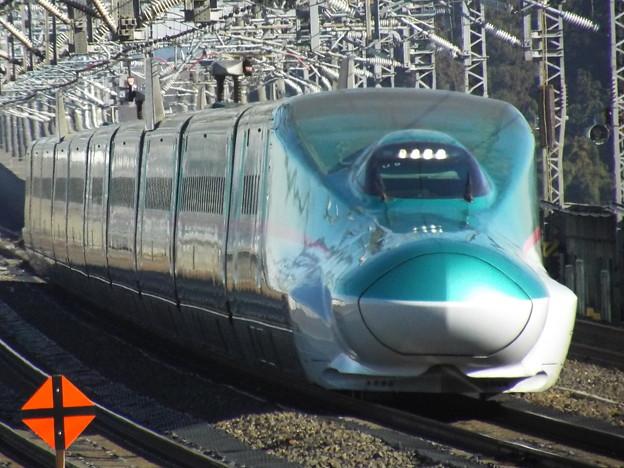E5系U9編成  (3)