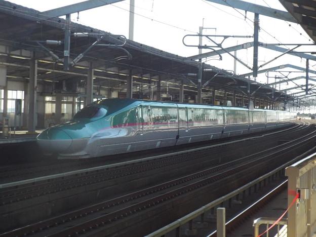 E5系U17編成  (2)