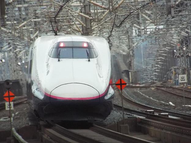 E2系J69編成 (2)
