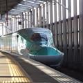 E5系U23編成 (7)