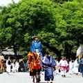 葵祭り2017