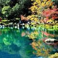 秋を映して鏡のように美しい池