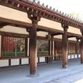 写真: 法隆寺の秋