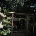 写真: 10_鹿島新宮-3795