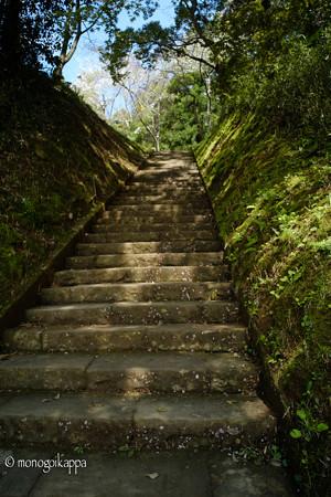 17_奥宮へむかう階段-3825