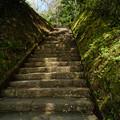 写真: 17_奥宮へむかう階段-3825
