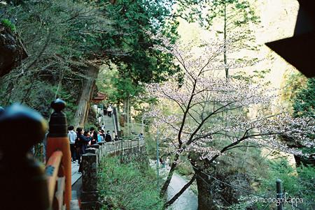 02榛名神社_神橋-000021