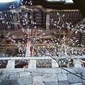 写真: 05榛名神社_双龍門-000024