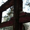 写真: 秋葉神社_2の鳥居-4029