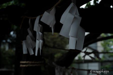 紙垂_f5.6-4223