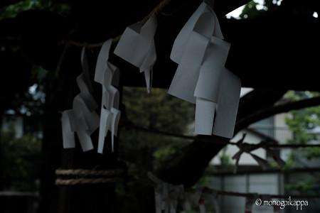 紙垂_f8-4224