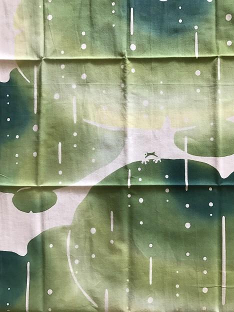 写真: 甘雨の蛙