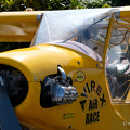 写真: Yellow airplane-4599