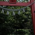 写真: 黒髪山神社-5618