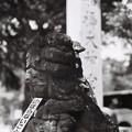 Photos: 船橋大神宮_のぼらないこと_LeicaM6_Nokton50mm_ORIENTAL SEAGULL100-000010