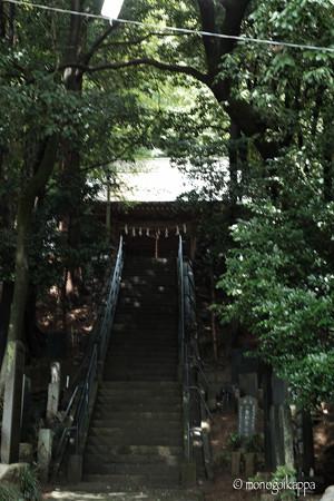 十二所神社_02階段-5815