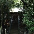 写真: 十二所神社_02階段-5815